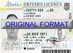 Alberta Fake Driver License Format ID Cards Designs Templates Novelty Software Card Hologram