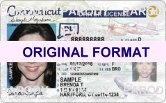 Connecticut driver license original format design novelty identity software card design products for new identity creations