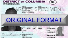 District Of Columbia Fake ID