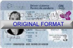 ontario driver license original format design novelty identity software card design products for new identity creations