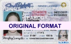 SOUTH DAKOTA DRIVER LICENSE ORIGINAL FORMAT, DESIGN SPECIFICATIONS, NOVELTY SECURITY CARD PROFILES, IDENTITY, NEW SOFTWARE ID SOFTWARE