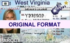 WEST VIRGINIA FAKE IDS WEST VIRGINIA SCANNABLE FAKE ID CARDS WITH HOLOGRAMS